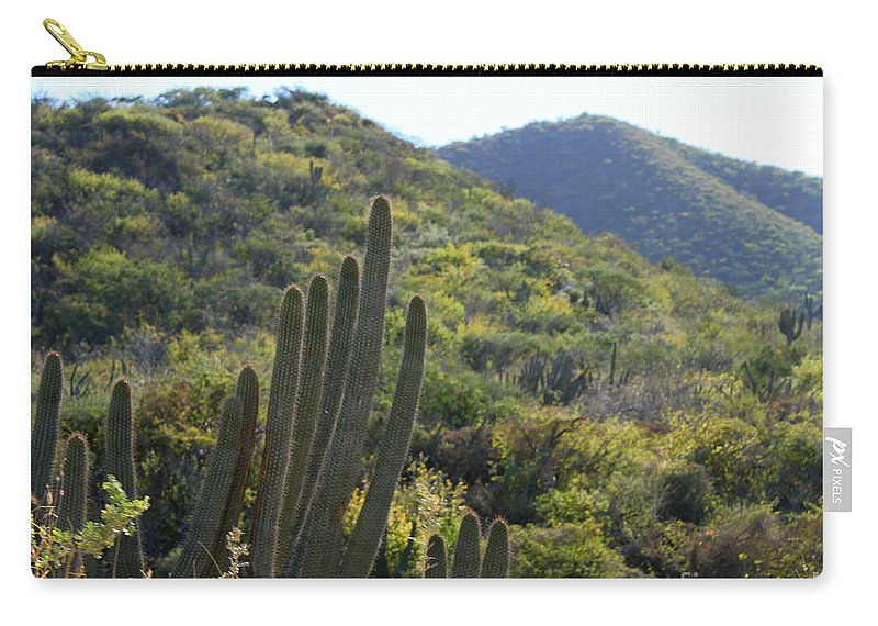 Cactus Carry-all Pouch featuring the photograph Cactus In The Desert by Charlene Cox