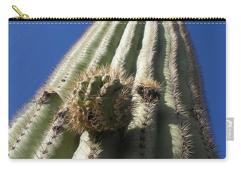 Cactus Carry-all Pouch featuring the photograph Cactus In The Sky by Diane Greco-Lesser