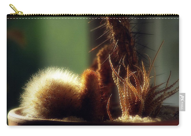 2d Carry-all Pouch featuring the photograph Cactus Light by Brian Wallace