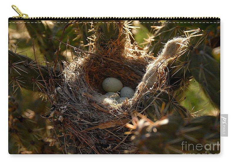 Cactus Carry-all Pouch featuring the photograph Cactus Nest by David Lee Thompson