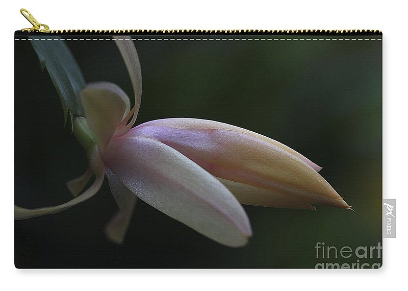 Flower Carry-all Pouch featuring the photograph Cactus Peach by Deborah Benoit