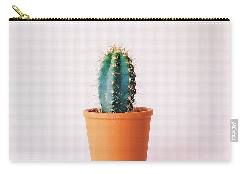 Cactus Carry-all Pouch featuring the photograph Cactus Pot by Happy Home Artistry