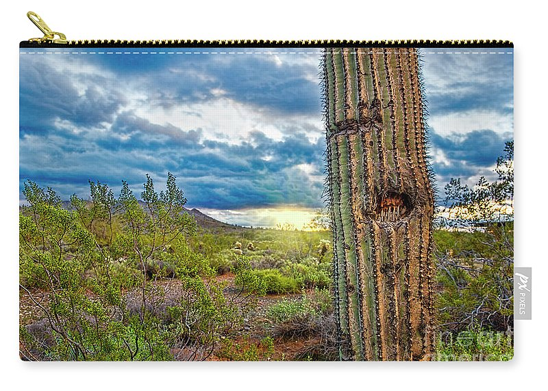 Cactus Carry-all Pouch featuring the photograph Cactus With Teeth by David Arment