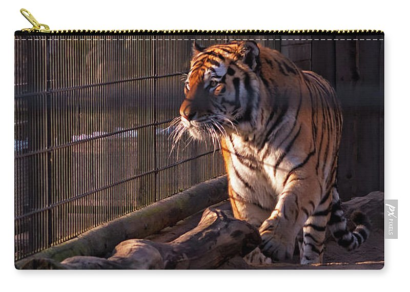 Copy Space Carry-all Pouch featuring the photograph Caged King Of The Jungle by Jukka Heinovirta
