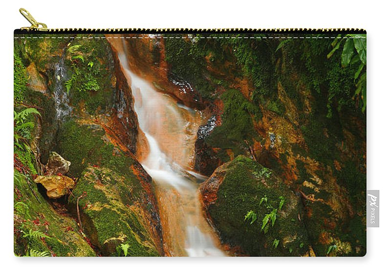 Azores Carry-all Pouch featuring the photograph Caldeira Velha Park by Gaspar Avila