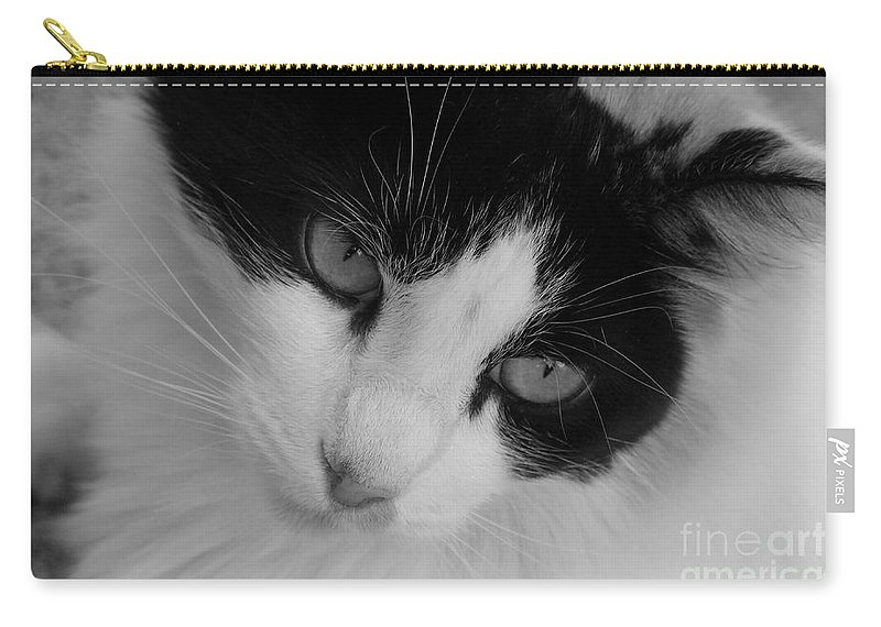 Black And White Carry-all Pouch featuring the photograph Calico by Mary Deal