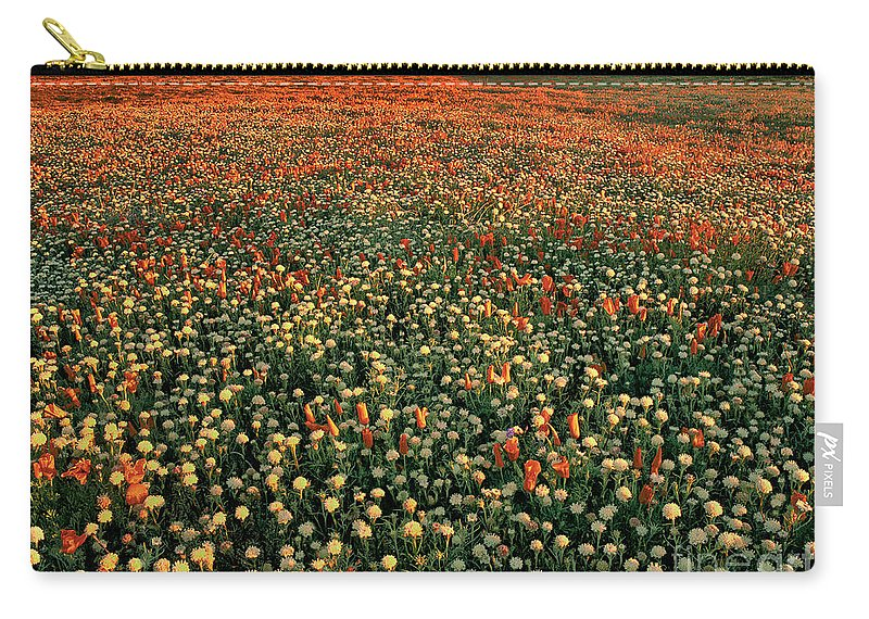 California Poppies Carry-all Pouch featuring the photograph California Poppies At Dawn Lancaster California by Dave Welling
