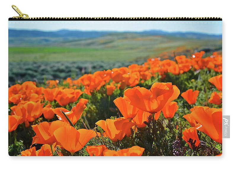 Antelope Valley California Poppy Reserve Carry-all Pouch featuring the photograph California Poppy Reserve by Kyle Hanson