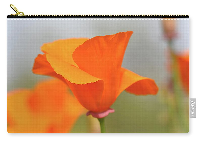 Flower Carry-all Pouch featuring the photograph California State Poppy Macro by Brandon Bourdages