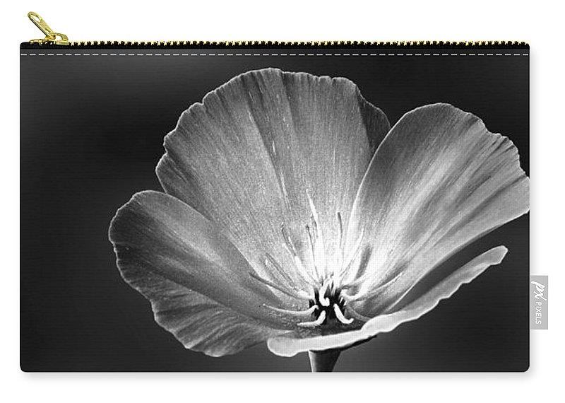 Californian Poppy Carry-all Pouch featuring the photograph Californian Poppy by John Edwards