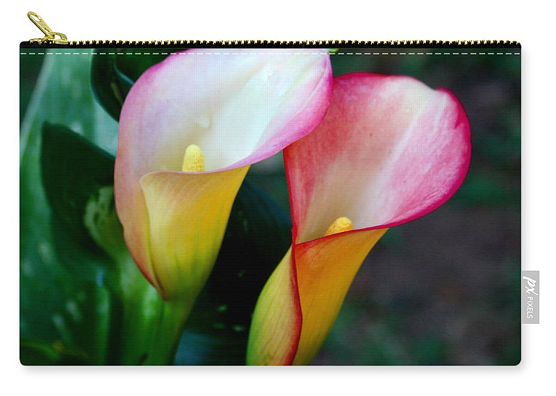 Calla Lily Carry-all Pouch featuring the photograph Calla Lily Twins by Paul Anderson
