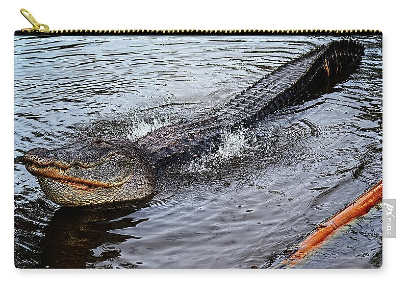 Alligator Carry-all Pouch featuring the photograph Calling For A Date by Christopher Holmes
