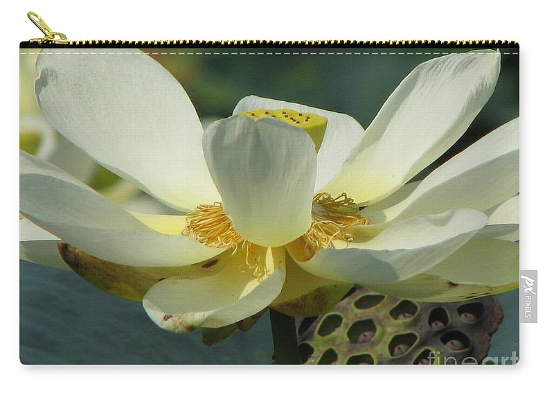 Lotus Carry-all Pouch featuring the photograph Calm by Amanda Barcon