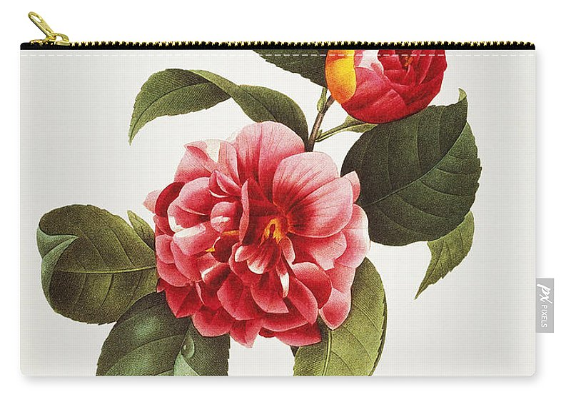 1833 Carry-all Pouch featuring the photograph Camellia, 1833 by Granger