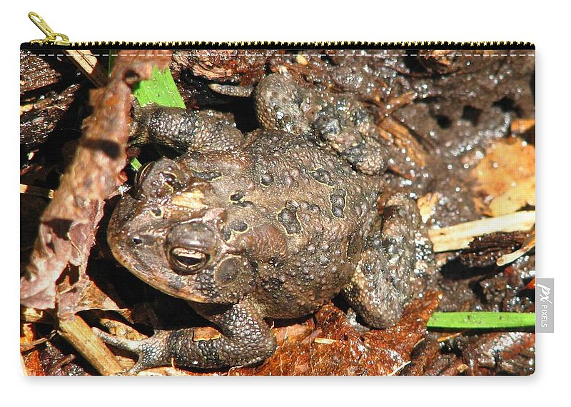 Toad Carry-all Pouch featuring the photograph Camouflage by J M Farris Photography