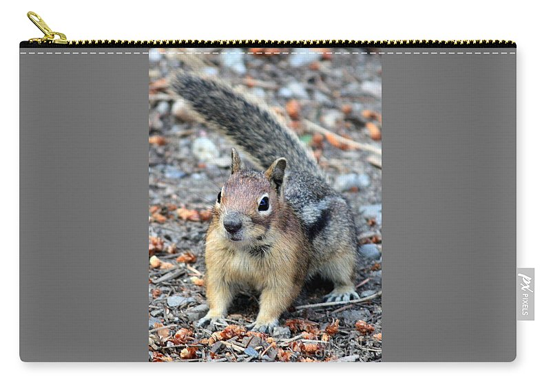 Chipmunk Carry-all Pouch featuring the photograph Campground Chipmunk by Carol Groenen