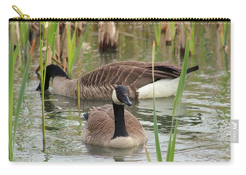 Canada Carry-all Pouch featuring the photograph Canada Geese In Pond by Anita Hiltz