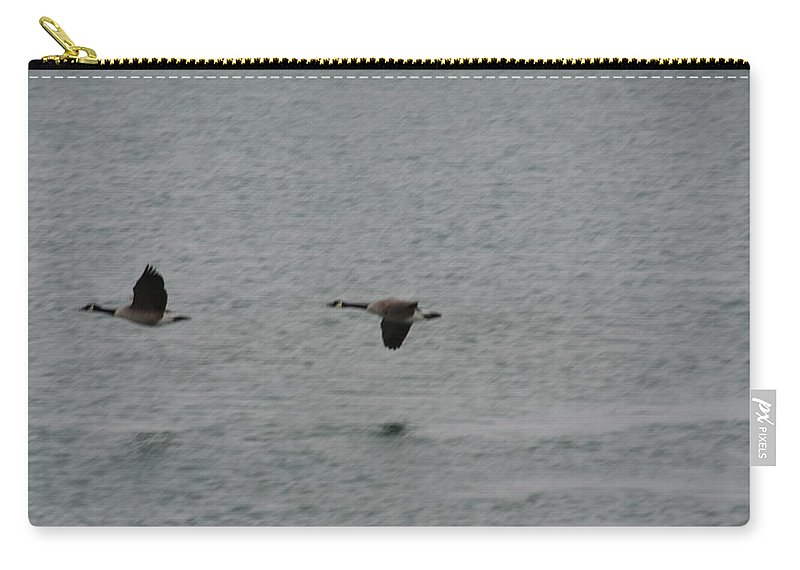 Geese Carry-all Pouch featuring the photograph Canadian Geese In Flight by Randy J Heath