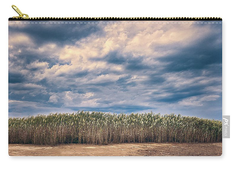 Sicily Carry-all Pouch featuring the photograph Cane Thicket by Emanuele Carlisi