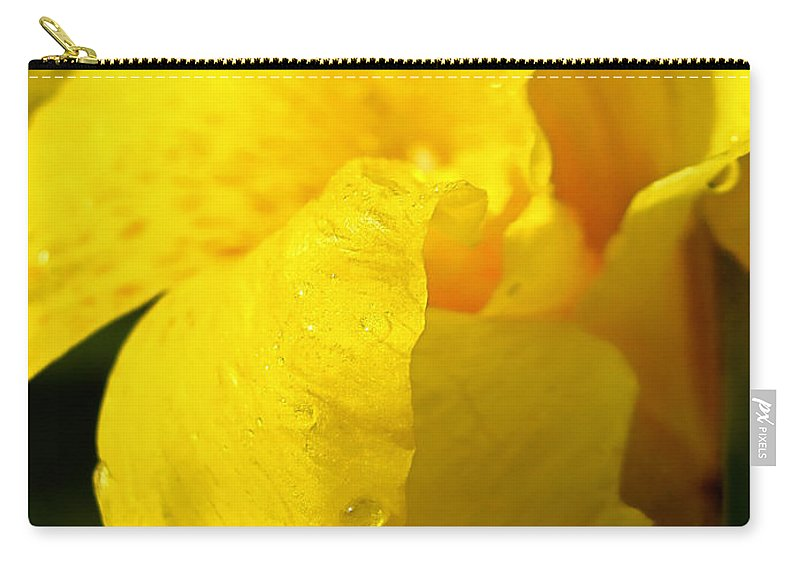 Flower Carry-all Pouch featuring the photograph Canna At Sunrise by Todd A Blanchard