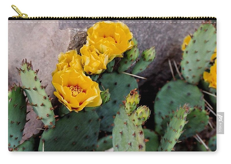 Cactus Carry-all Pouch featuring the photograph Cantankerous Cactus by Michiale Schneider