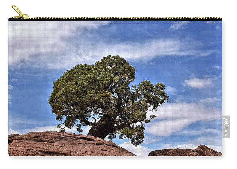 Canyonlands National Park Carry-all Pouch featuring the photograph Canyonlands Tree by Flo McKinley