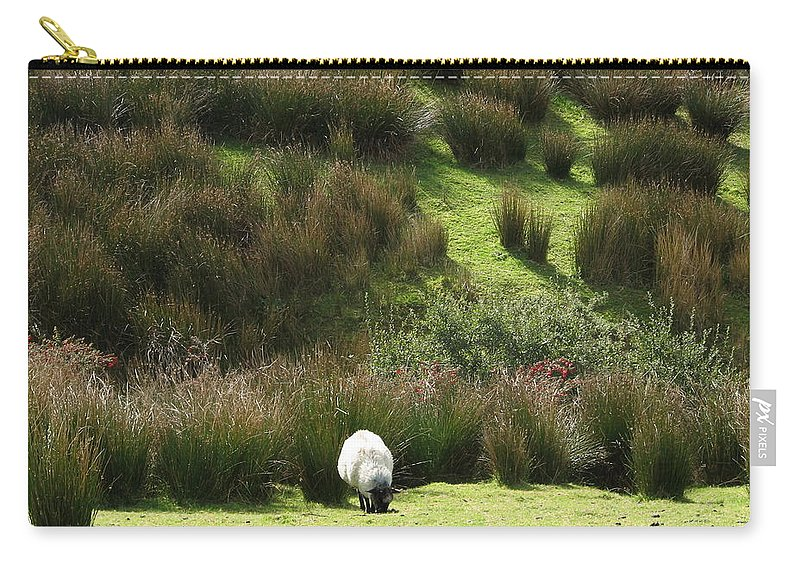 Sheep Carry-all Pouch featuring the photograph Caora by Kelly Mezzapelle