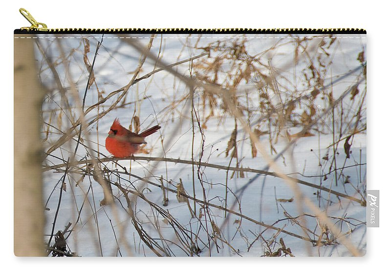 Bird Carry-all Pouch featuring the photograph Cardinal In Winter 2 by David Arment