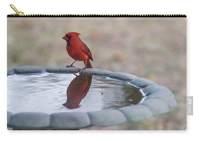 Terry Deluco Carry-all Pouch featuring the photograph Cardinal Reflection by Terry DeLuco