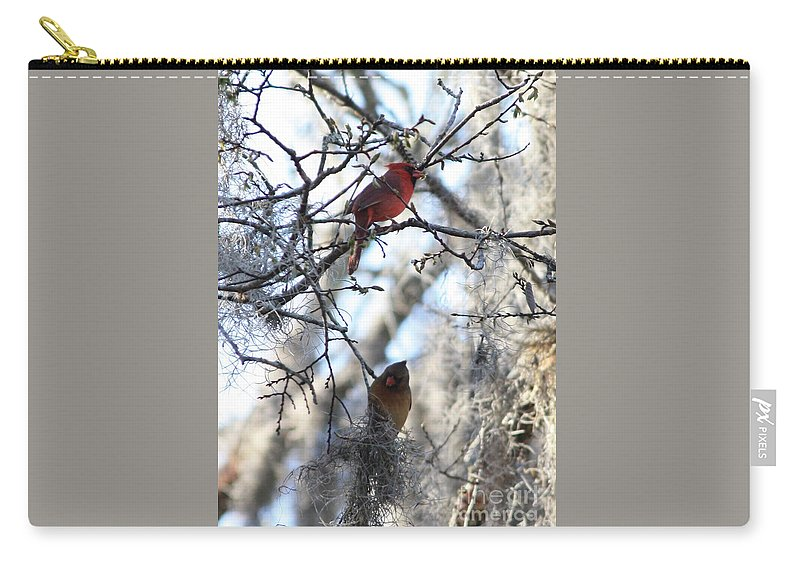 Wildlife Carry-all Pouch featuring the photograph Cardinals In Mossy Tree by Carol Groenen