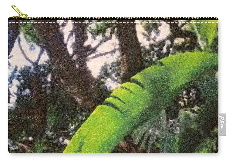 Caribbean Carry-all Pouch featuring the photograph Caribbean Banana Leaf by Ian MacDonald