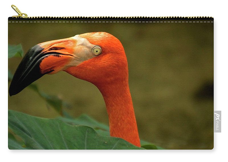 Carry-all Pouch featuring the photograph Caribbean Flamingo by Bill Jordan