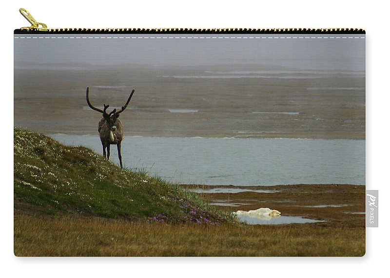 Caribou Carry-all Pouch featuring the photograph Caribou Fog by Anthony Jones