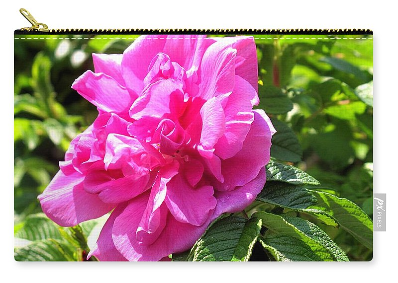 Rose Carry-all Pouch featuring the photograph Carmen by Ian MacDonald
