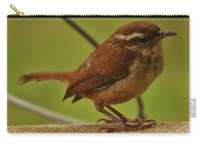 Wren Carry-all Pouch featuring the photograph Carolina Wren by Earl Williams Jr