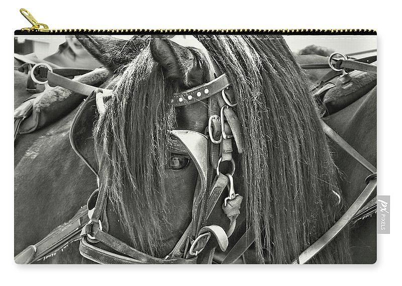 Horse Carry-all Pouch featuring the photograph Carriage Horse Beauty by JAMART Photography