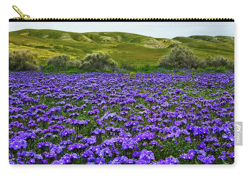Carrizo Plain National Monument Carry-all Pouch featuring the photograph Carrizo Plain National Monument Wildflowers by Kyle Hanson