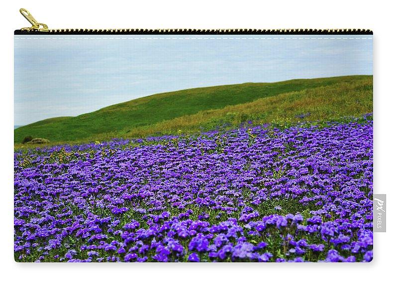Carrizo Plain National Monument Carry-all Pouch featuring the photograph Carrizo Plain Phacelia by Kyle Hanson