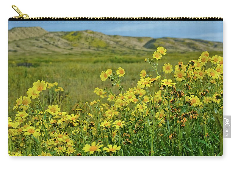 Carrizo Plain National Monument Carry-all Pouch featuring the photograph Carrizo Plain Yellow Daisies by Kyle Hanson