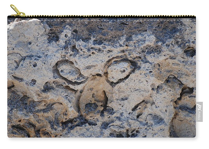 Ocean Carry-all Pouch featuring the photograph Carved Catface by Rob Hans
