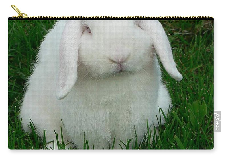 Rabbit Carry-all Pouch featuring the photograph Casper by Melissa Haney