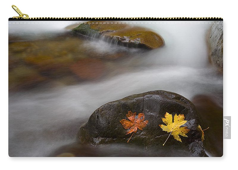 Leaves Carry-all Pouch featuring the photograph Castaways by Mike Dawson