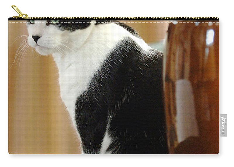 Animal Carry-all Pouch featuring the photograph Cat Contimplation by Jill Reger