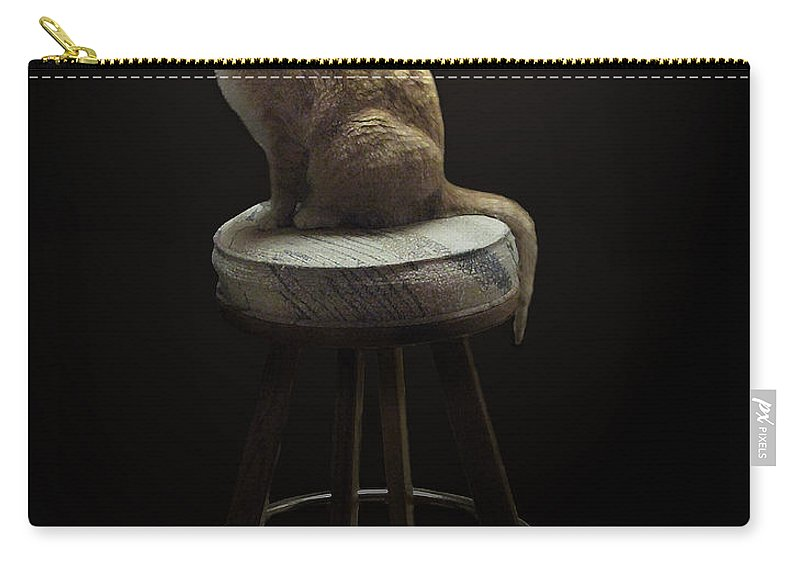 Cat In Repose Carry-all Pouch featuring the photograph Cat In Repose by Peter Piatt