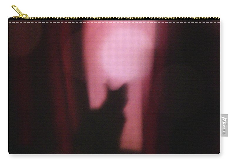 Felis Catus Carry-all Pouch featuring the photograph Cat In The Window by Alycia Christine