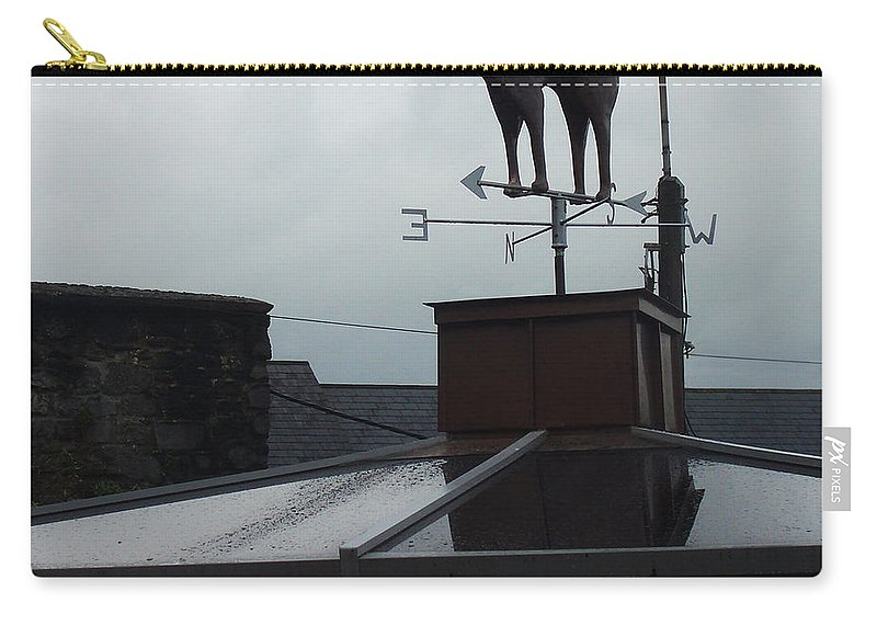 Cat Carry-all Pouch featuring the photograph Cat On A Cool Tin Roof by Tim Nyberg