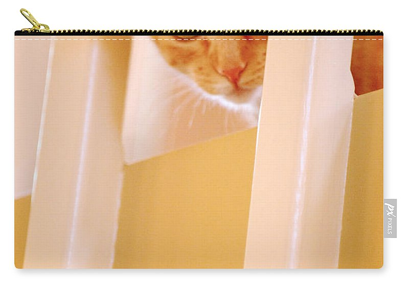 Animal Carry-all Pouch featuring the photograph Cat Spy by Jill Reger