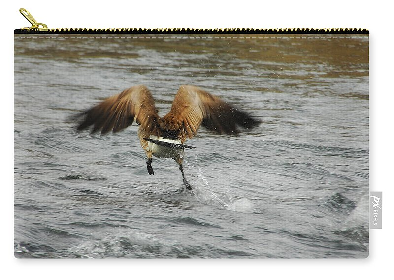 Goose Carry-all Pouch featuring the photograph Catch Me If You Can by Donna Blackhall