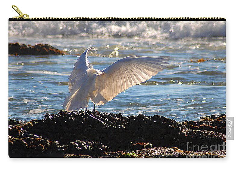 Clay Carry-all Pouch featuring the photograph Catching Rays At The Beach by Clayton Bruster