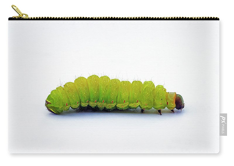 Caterpillar Carry-all Pouch featuring the photograph Caterpillar by Bill Morgenstern